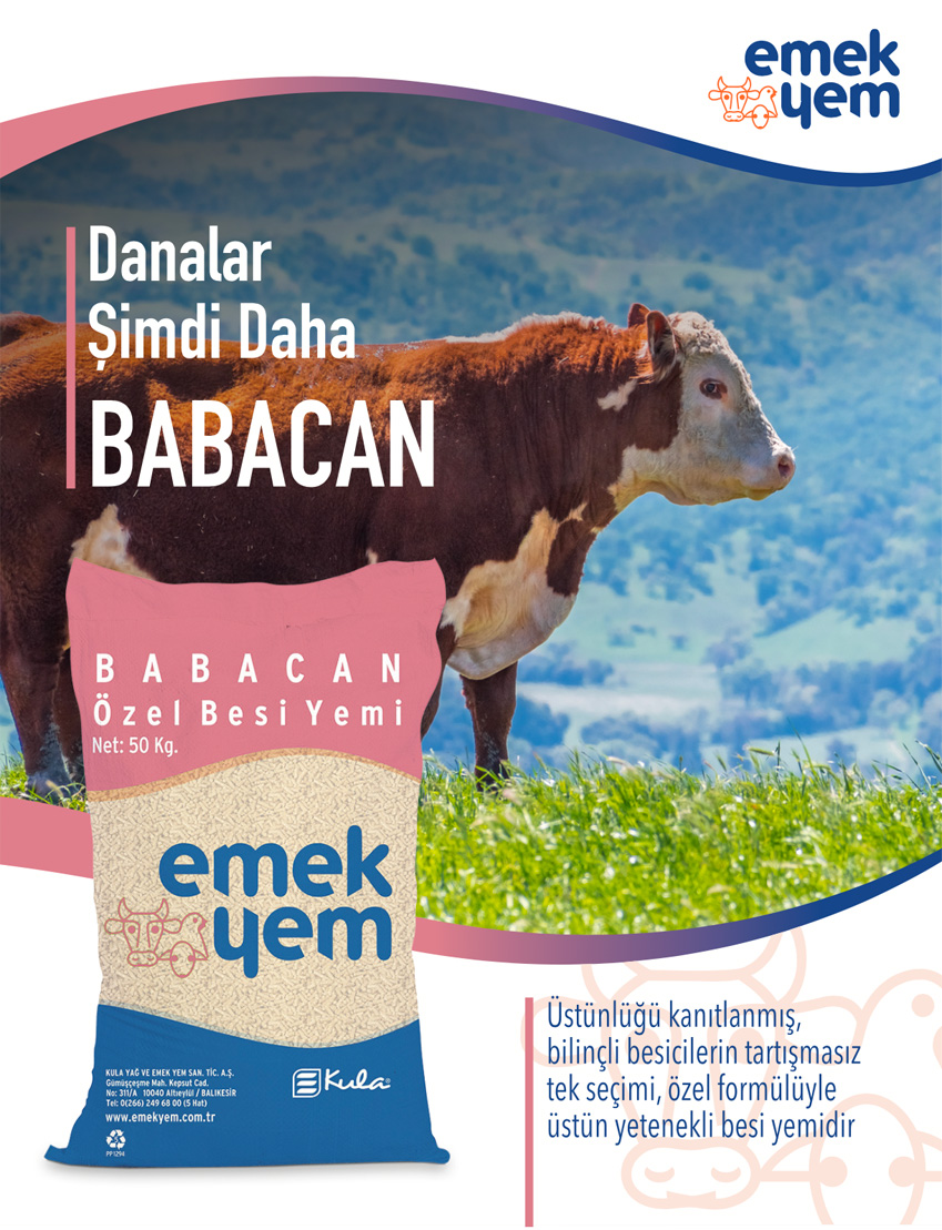 babacan-cover
